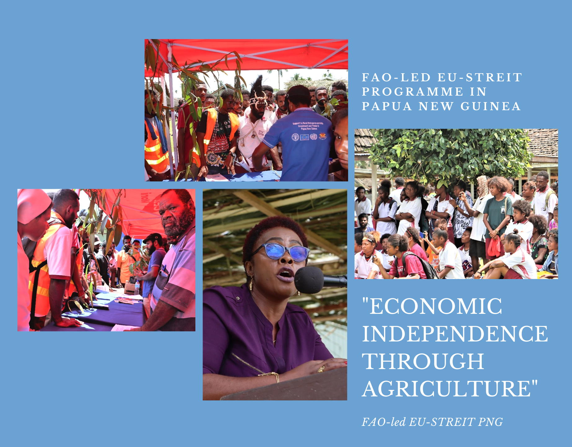 FAO-led EU-STREIT PNG Programme promotes 'economic independence through agriculture' among rural youth populations